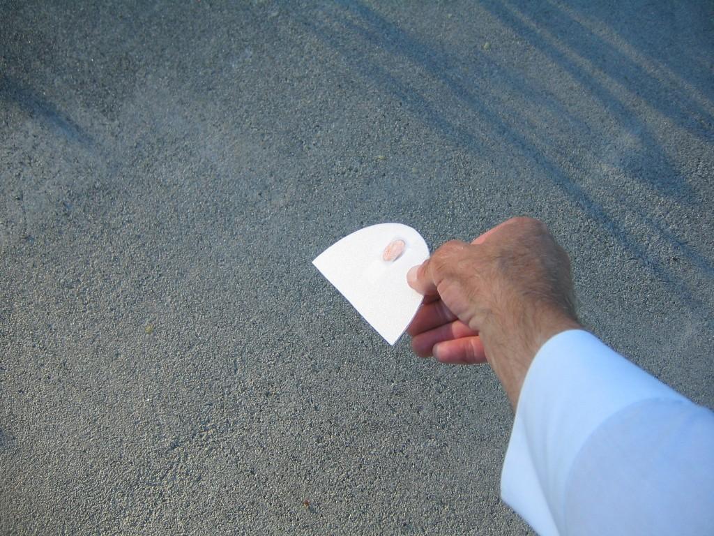 Foam Plate Gliders 056