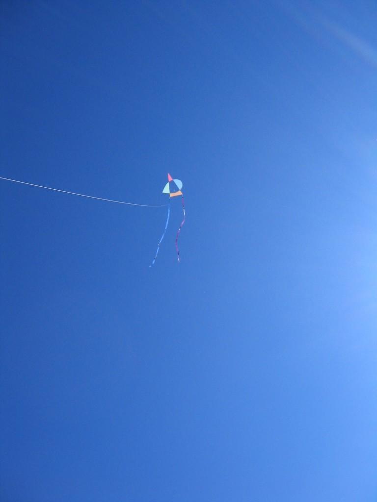 Asymmetric Kites 012
