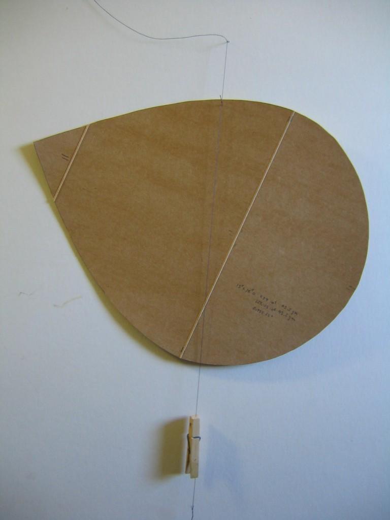 Honu Kite 041